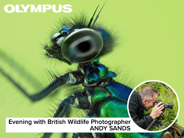 An evening with Andy Sands, British Wildlife Photographer