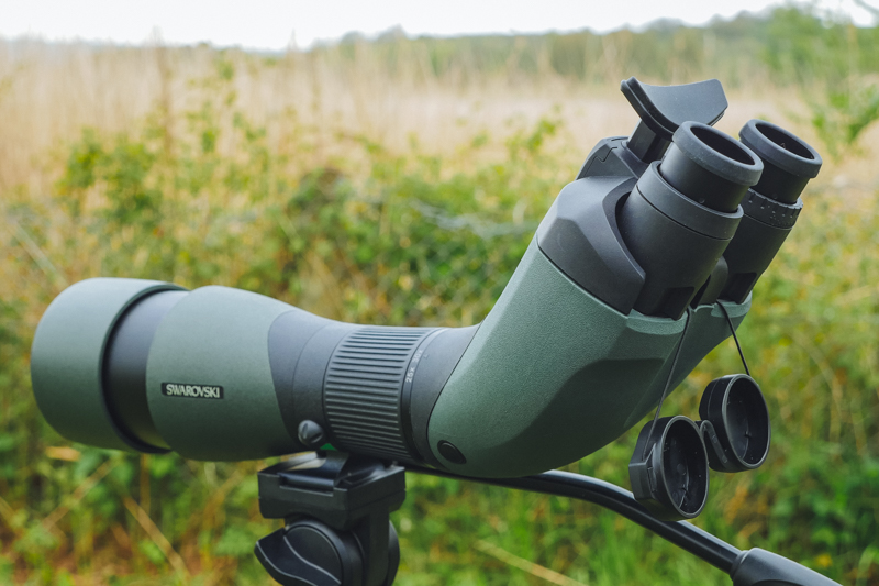 0f2be2dd53 Combining a unique and revolutionary design Swarvoski has produced a twin  eye piece module for their popular series of Field Scopes. The BTX allows  users to ...
