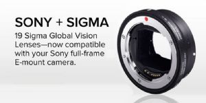Sigma MC-11 E-Mount Lens Adapter - For Canon