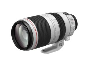 Canon EF 100-400mm f/4.5-5.6L IS USM MKII